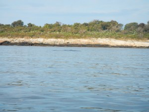 Here is another photo of the dark patch, hiding a submerged rock