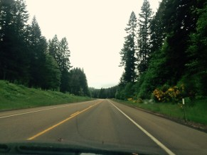 A view from the front seat along Route 34.