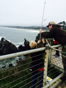Amanda and Ian adjust the VHF antenna to try and catch 24-hour presence-absence data for a tagged common murre.