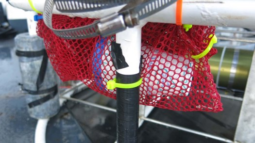 In the mesh bag, and attached to the Rosette for shrinkage. Photo by DJ Kast
