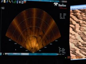 Live forward sonar scanner