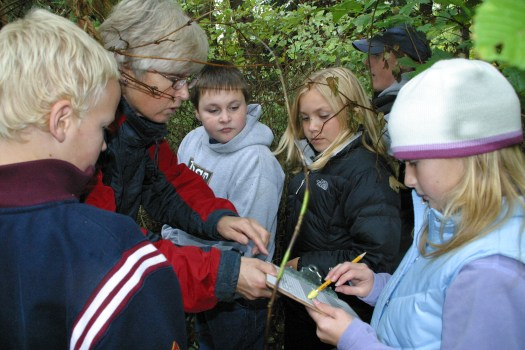 Field studies of salmon habitat with 4th grade students