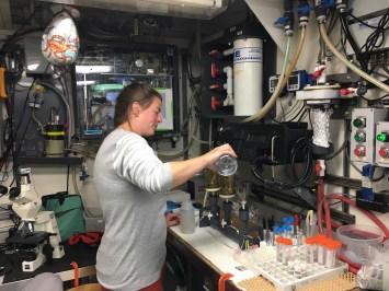 Lynne in Chem lab