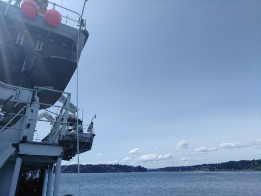 One of the Launches is Lowered from F Deck (the 6th Deck Up)