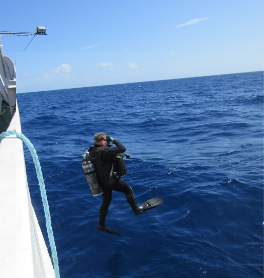 A diver enters the water with a Giant Stride.