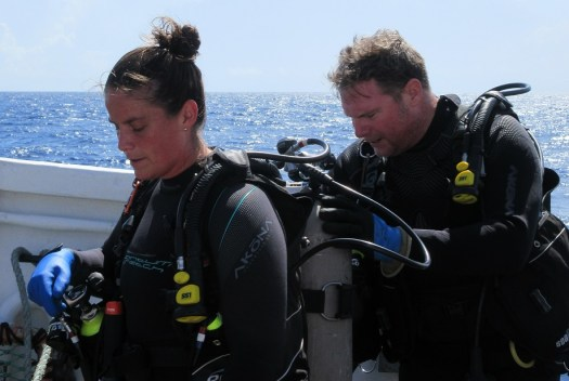 Divers perform a safety check before entering the water.