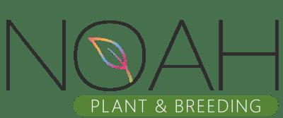 NOAH-Plant-original-completo-red