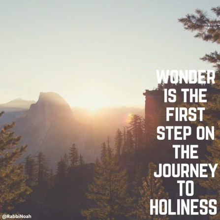 Wonder is the first step