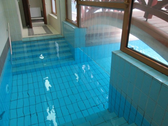 Indoor-Outdoor Pool
