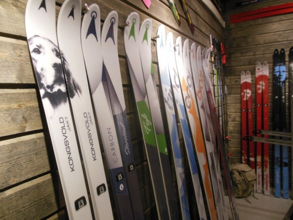 Asnes Skis Norway