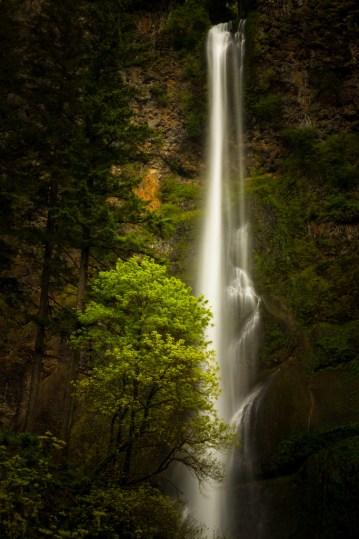 imageslike.com-large-multnomah-falls-multnomah-falls