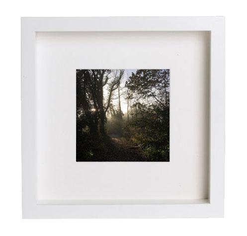 Framed & Signed Print