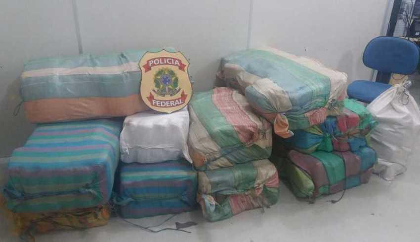 No Amazonas, PF encontra 370 kg de droga avaliada em R$ 3 milhões - Imagem: Polícia Federal