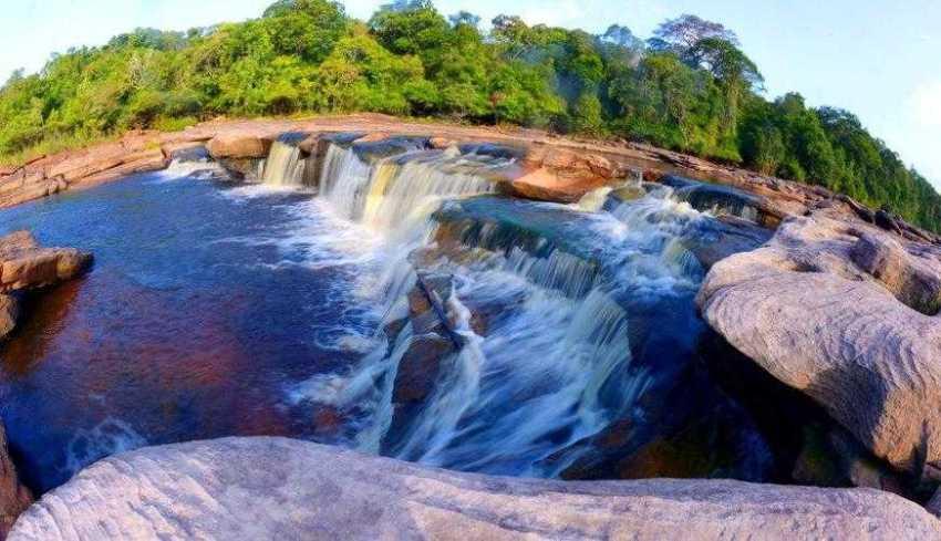 Parque Nacional do Jaú / Foto : Divulgação