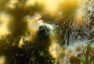 Corpo ainda não identificado é encontrado na Colônia Japonesa / Foto : Marcus Pessoa - Portal No Amazonas é Assim