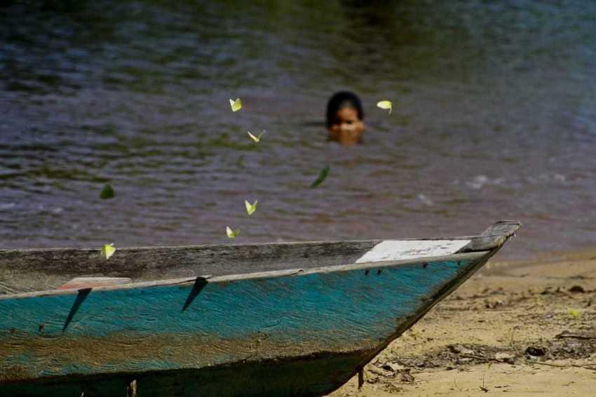 A vida nas águas do Tupé. / Foto Alberto César Araújo-Amazônia Real
