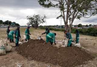 Prefeitura realiza plantio e distribuição de mudas em alusão ao Dia da Árvore na Amazônia / Foto – Divulgação / Semmas