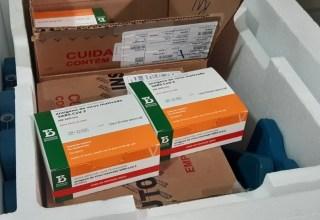 Vacina do Butantan é segura e induz resposta imune em adolescentes e crianças, mostra estudo publicado na Lancet