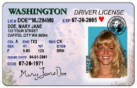 PIC-Driver-License for DWS