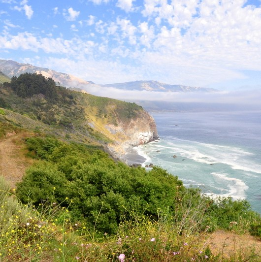 Family Pacific Coast Highway Road Trip Itinerary