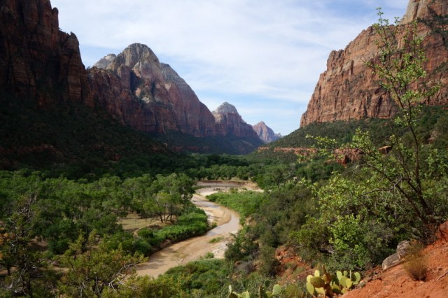 Visiting Zion National Park with kids