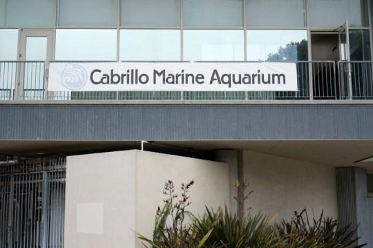 Cabrillo Marine Aquarium in San Pedro, CA