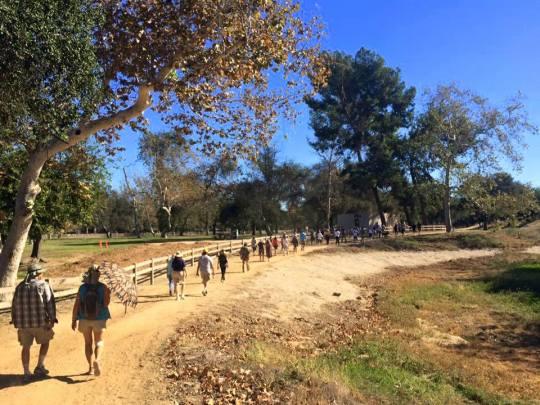 Get Outdoors with LA Walks