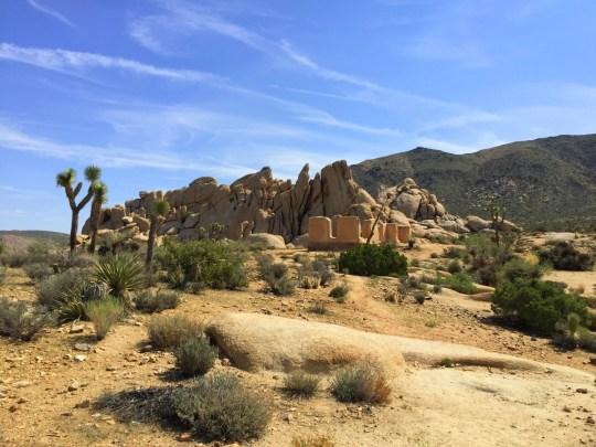 Ryan Ranch - Joshua Tree National Park Hiking