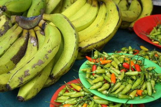 Farm to Table, Fijian Style