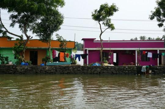 Cruising the backwaters of Kerala