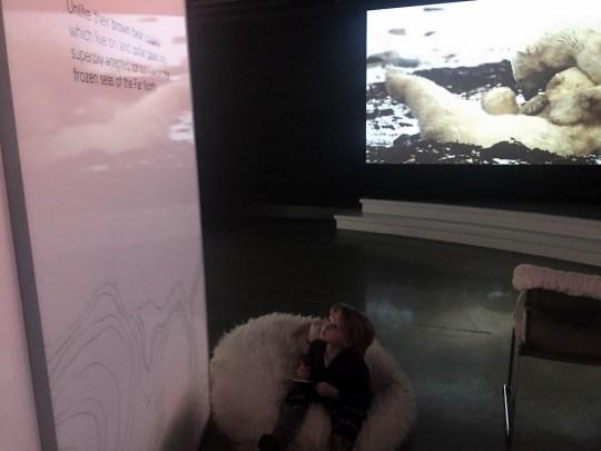 Annenberg Space for Photography Polar Bear Exhibit