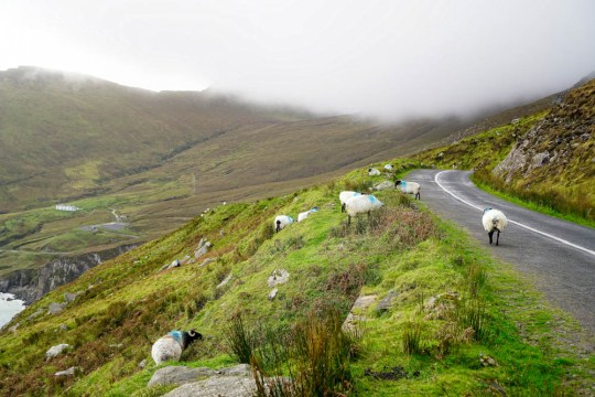 Exploring County Mayo on the Wild Atlantic Way