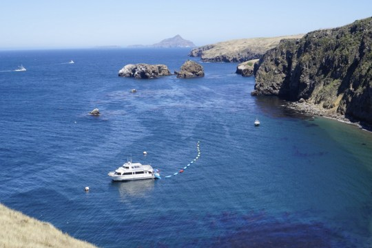 Channel Islands Kayak Center - SB Adventure Company
