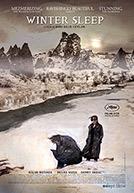WinterSleep-poster