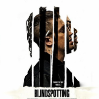 blindspotting_profile
