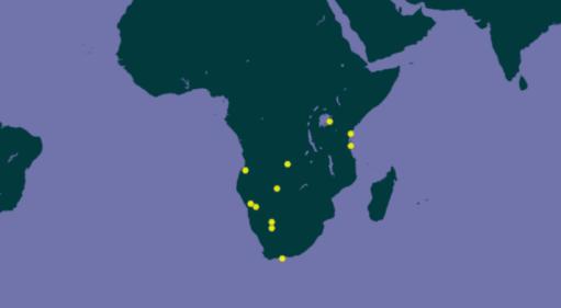 Aire de répartition de Archispirostreptus gigas