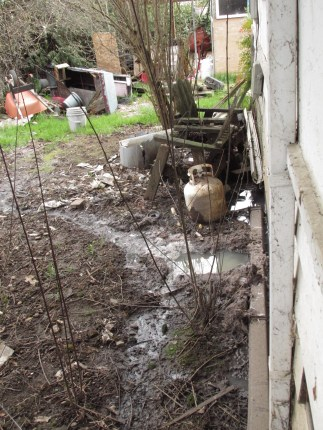Raw sewage from the system backing up