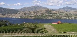 wineries bc tours