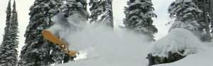 powder skiing tours