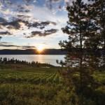 touring winery estates okanagan