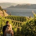 summerland winery tours