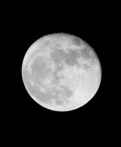 moon-041009