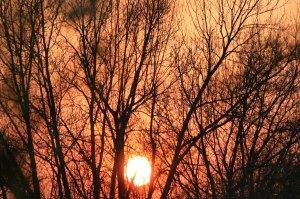 sunset-40809