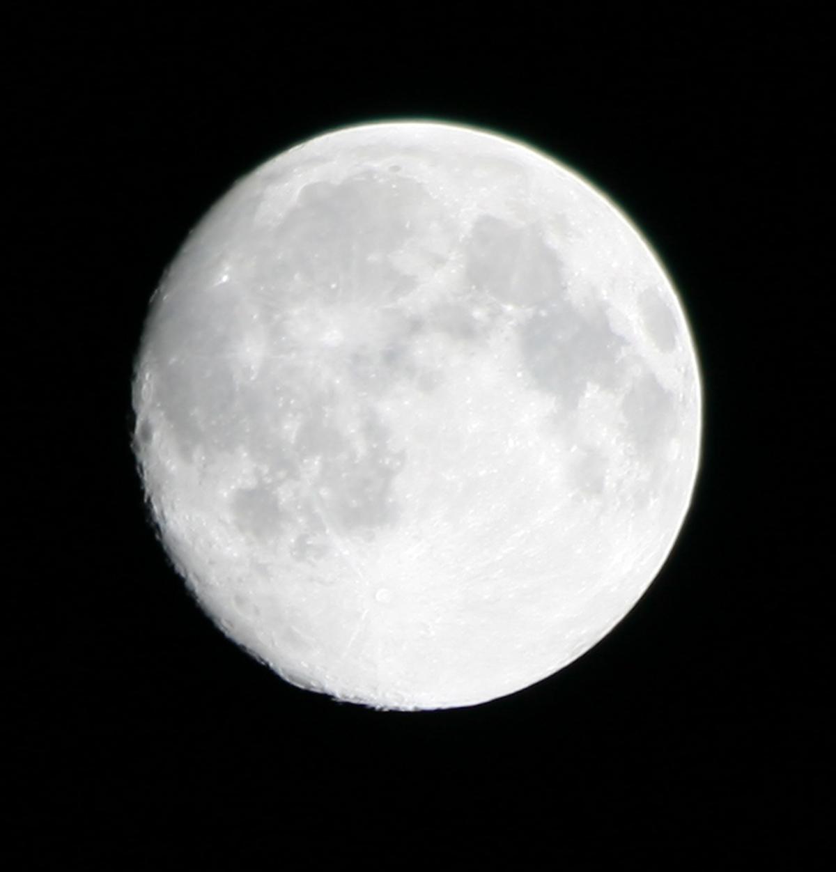 Halloween Moon – Noblesse Oblige
