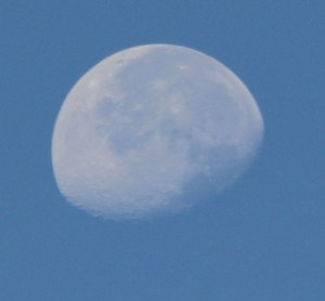 August Morning Moon