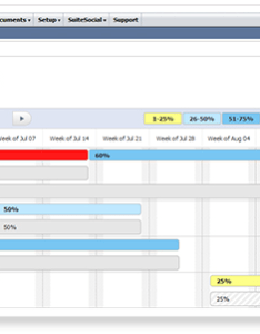 Netsuite resource allocations chart also have you tried   new allocation features noblue rh