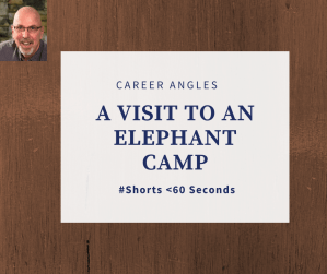 A visit to an elephant