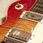 NRG LP Standard Norman's Rare Guitar