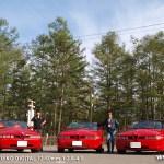 Alfa Romeo Day 2010