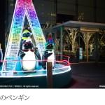 新宿イルミネーション(2)